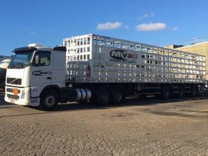 Gaiola MVA 1.720 P13